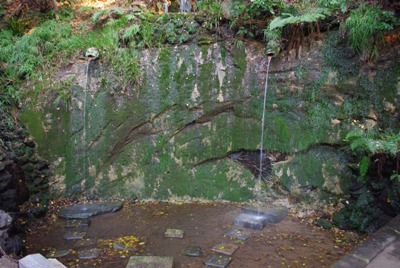等々力渓谷不動の滝2