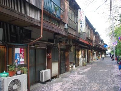 王子桜新道20100410-1