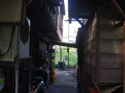 王子桜新道20100410-2