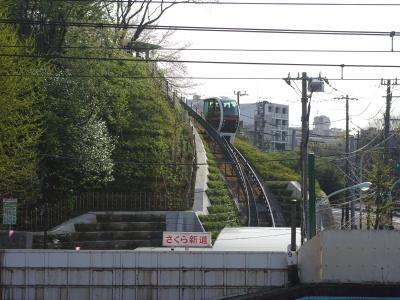 王子桜新道20100410-7