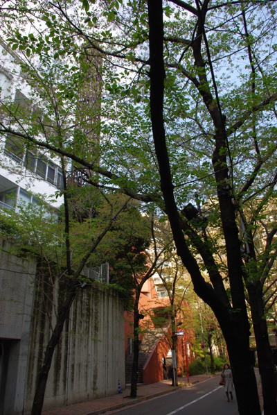 霊南坂教会20100417-2