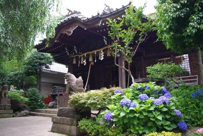 白山神社20100620-2