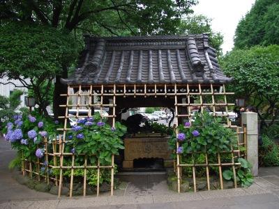 白山神社20100620-4