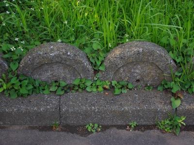 荻窪団地20100605-10