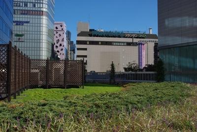 東京交通会館20100925-3
