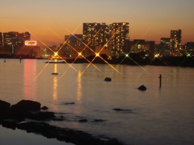 大井埠頭20101205