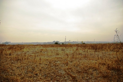 モノレール廃軌道20110205-8