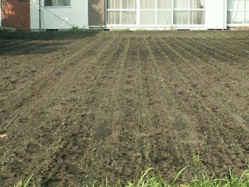 畝間の除草完了
