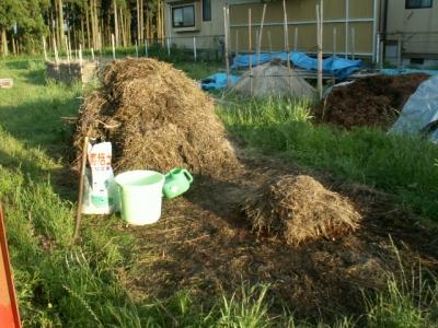 雑草堆肥1