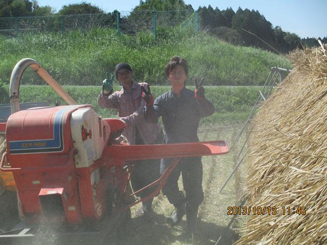 25年度のお米脱穀しました。