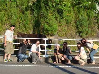 道端の牛と記念撮影