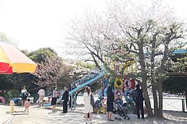20090410-03.jpg