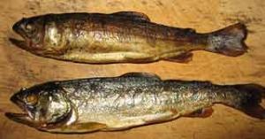 川魚のスモーク