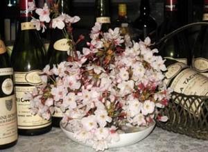 2回目の花見の桜