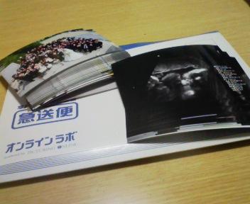 100327_194012.jpg