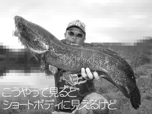 20110509_953881.jpg