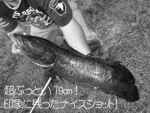 20110509_953882.jpg