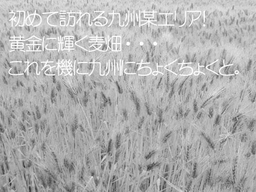 20110523_963759.jpg