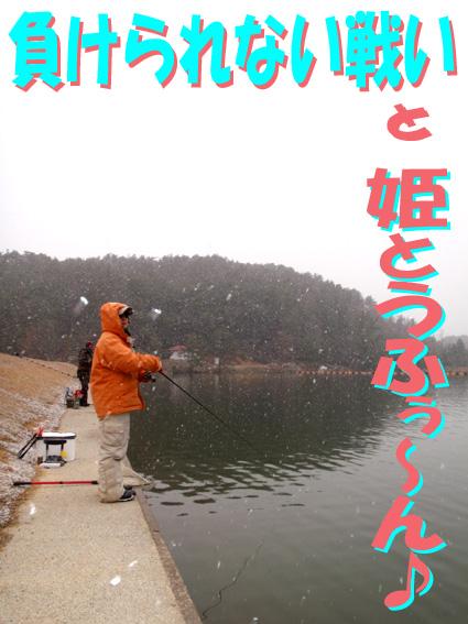 20120311 010.jpg