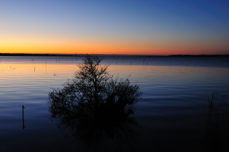夜明けの湖