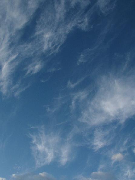 北東の空の筋雲(巻雲)