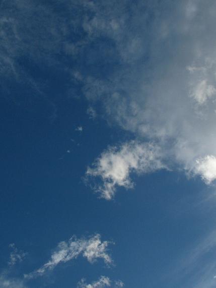 網状雲(巻雲・巻層雲)