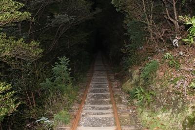 登山口(暗い)