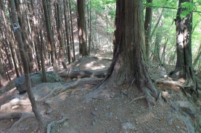 岩茸石山への道のり