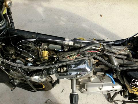 CIMG9500.JPG