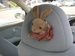 ドライブウサギ