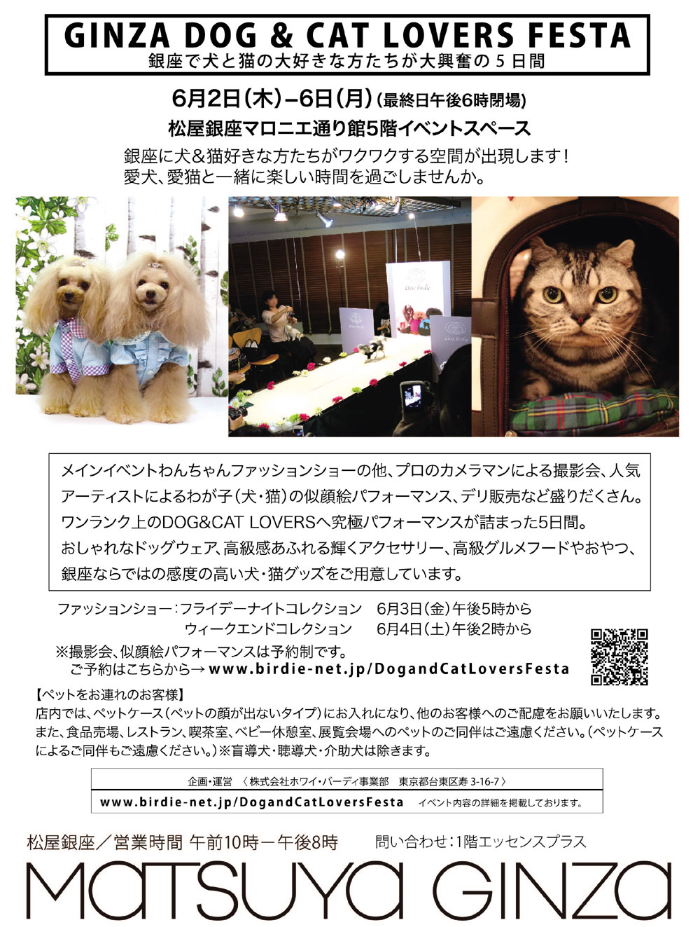 [GINZA DOG & CAT LOVERS FESTA 2016]