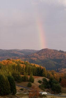 紅葉と虹の橋
