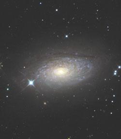 ひまわり銀河