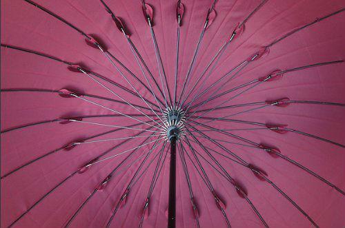高強度グラスファイバー24本骨傘 (デュポン社製撥水加工) ネイビー