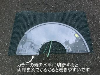 20110727_2191774.jpg