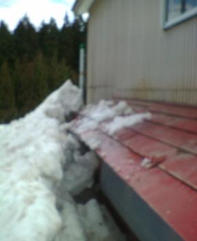 懐かしの我が家は雪の中
