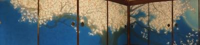 襖絵パノラマ桜