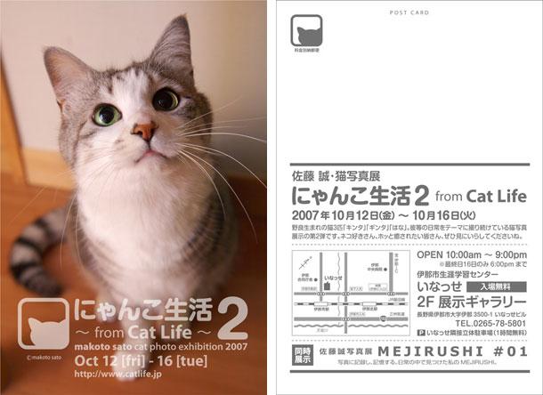 佐藤誠・猫写真展「にゃんこ生活2 from CatLife」DM