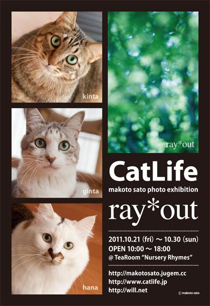 佐藤誠写真作品展「CatLife + ray*out