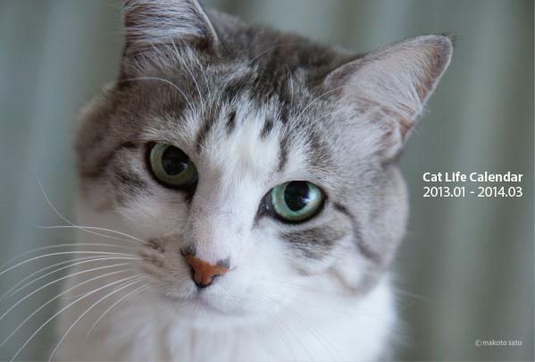 2013年CatLifeカレンダー表紙