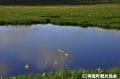 優秀賞 楽園 2011雨竜町観光フォトコンテスト