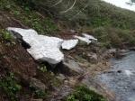 140618水場周辺の残雪
