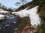140605水場周辺の残雪