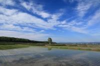 2015雨竜町観光フォトコンテスト 佳作 里の春 増井典子 (北海道苫小牧市)