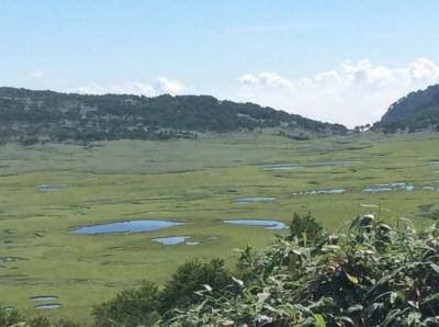 170730今日の雨竜沼