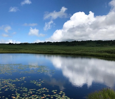 170819-2今日の雨竜沼