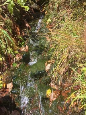 170926-3今日の雨竜沼