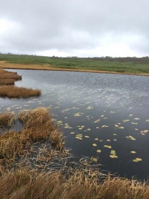 1701007-4今日の雨竜沼