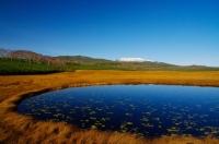 優秀賞「草もみじの雨竜沼湿原」