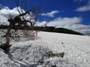180615南暑寒岳登山道